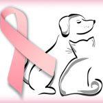 dac-breat-cancer-logo